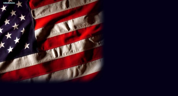 American Flag Eagle Wallpaper (10)