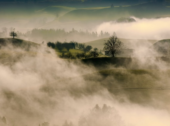 mist-in-herzel-switzerland.-photo-by-ricardo-gomez-angel