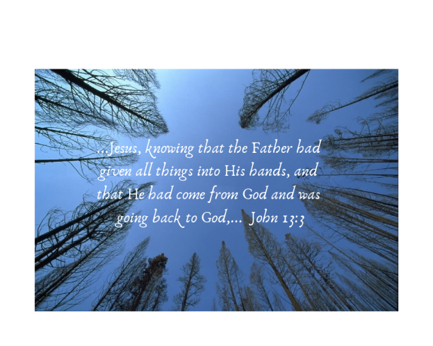 Jesus, knowing that the Father had given all things into his hands, and that he had come from God and was going back to God,